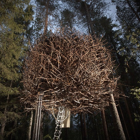 Attention bird lovers and tree house aficionados. This shelter lets you truly disappear into the forest. Read more.